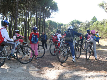 Paseo en bici por el Pardo
